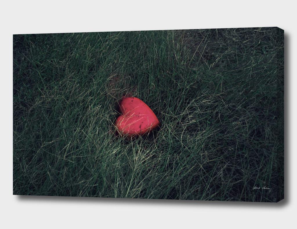a forgotten heart