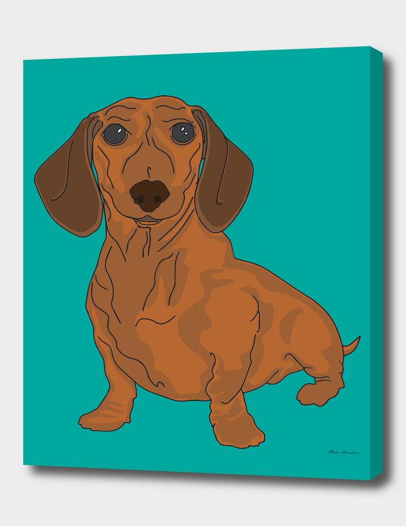 Dachshund - Dogs Series