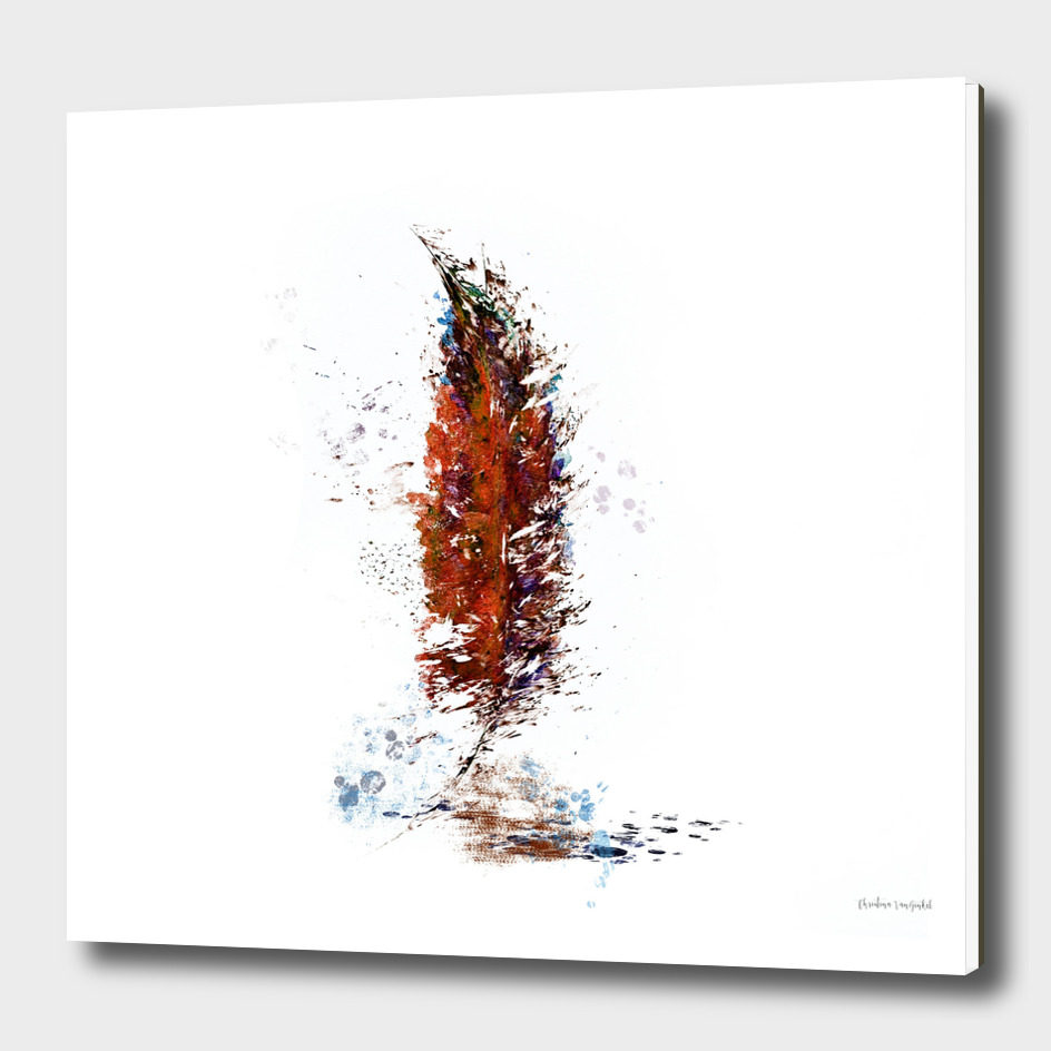 Rust Watercolor Feather