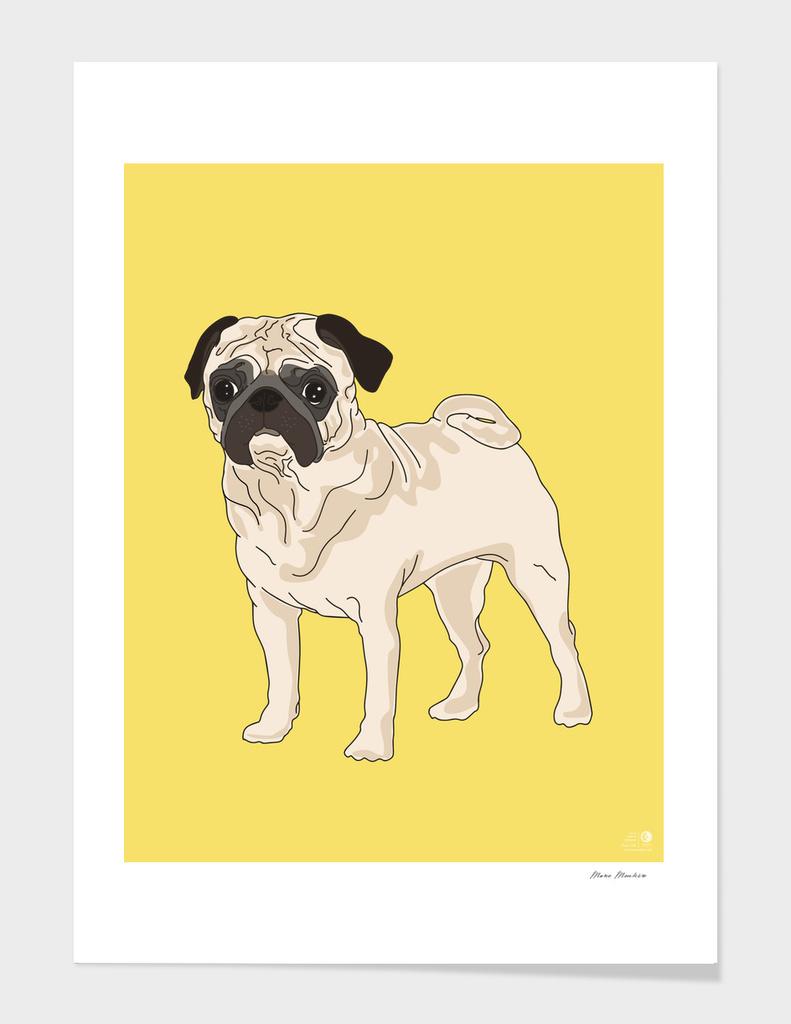 Pug - Dog Series