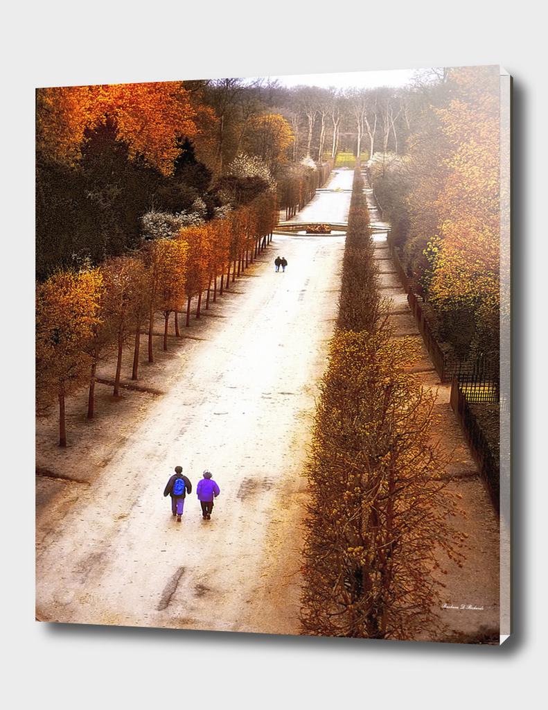 Strolling Versailles