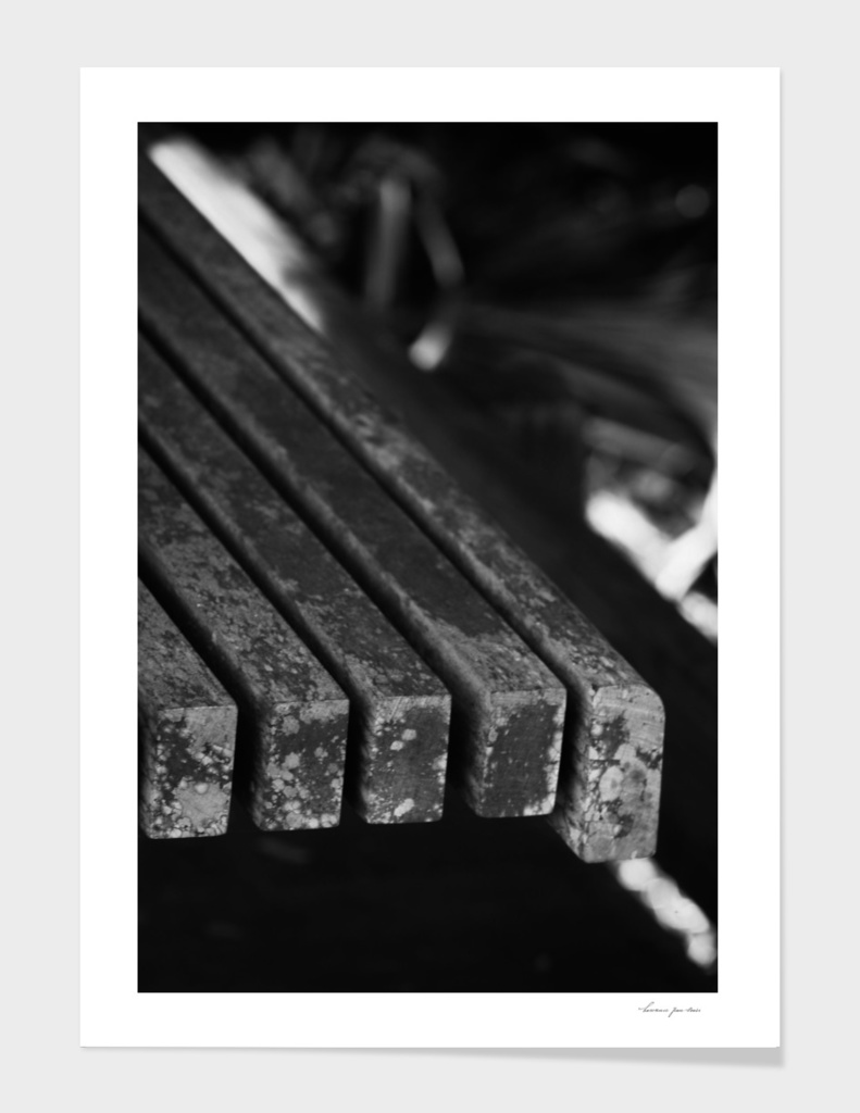 Weathered Wooden Bench in B/W