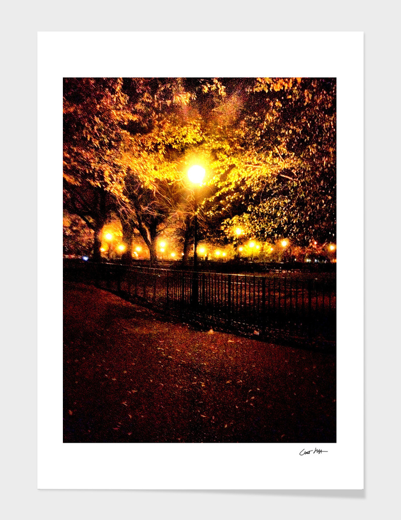 tompkins square park at night