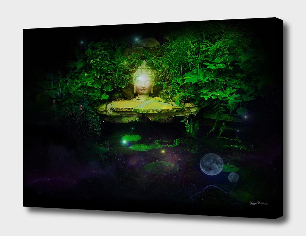 The Buddha Pond (Reflective Edition)