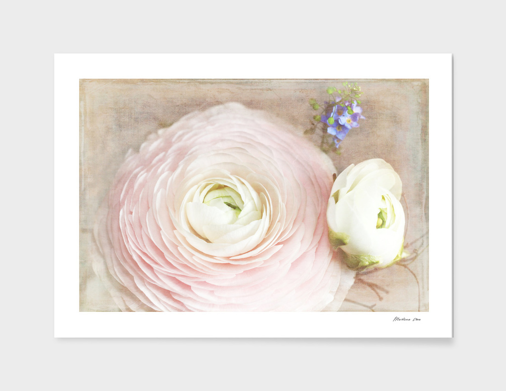Vintage and Romantic Spring Flowers