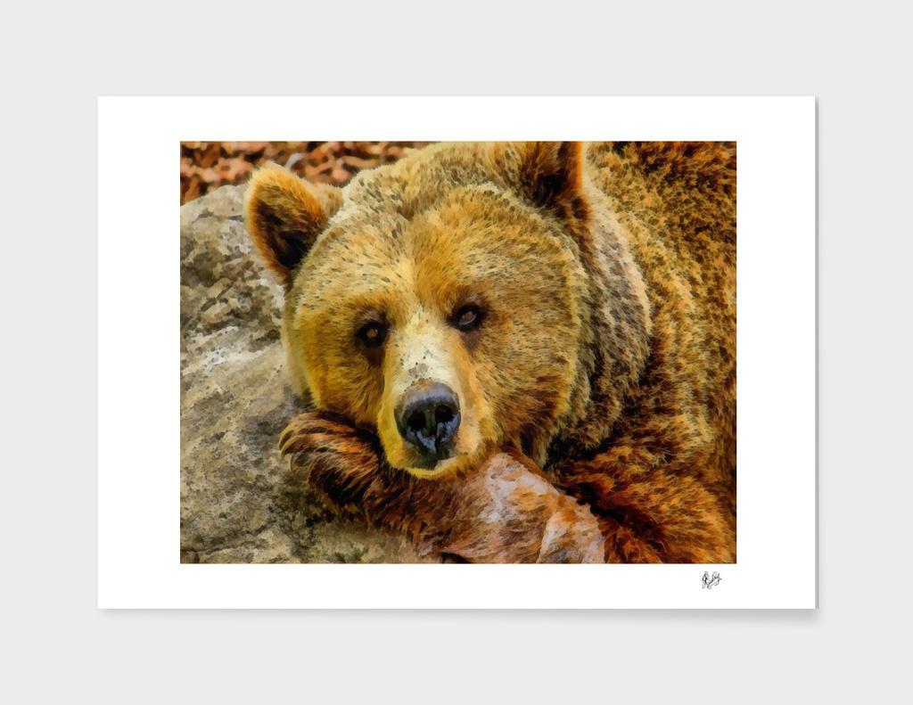 BEAR RESTING ON A ROCK