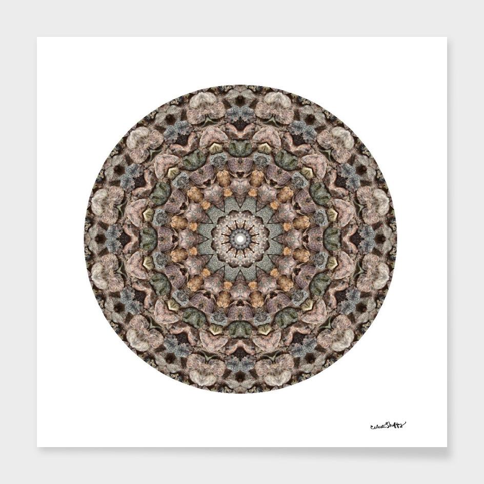 Rock Mandala 9812