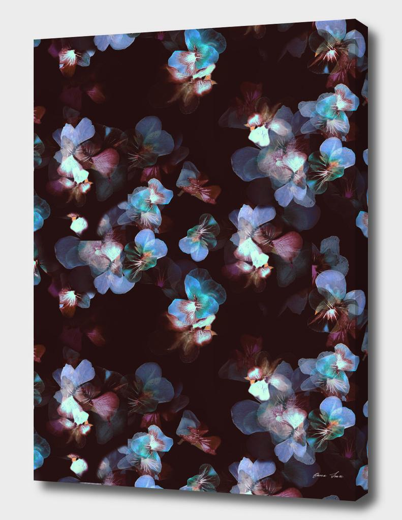 Pansy petals