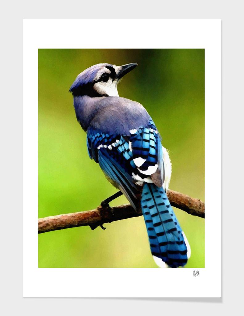 HYPER-REALISTICALIA C1N6 - BLUE JAY BIRD SITTING ON A BRANCH