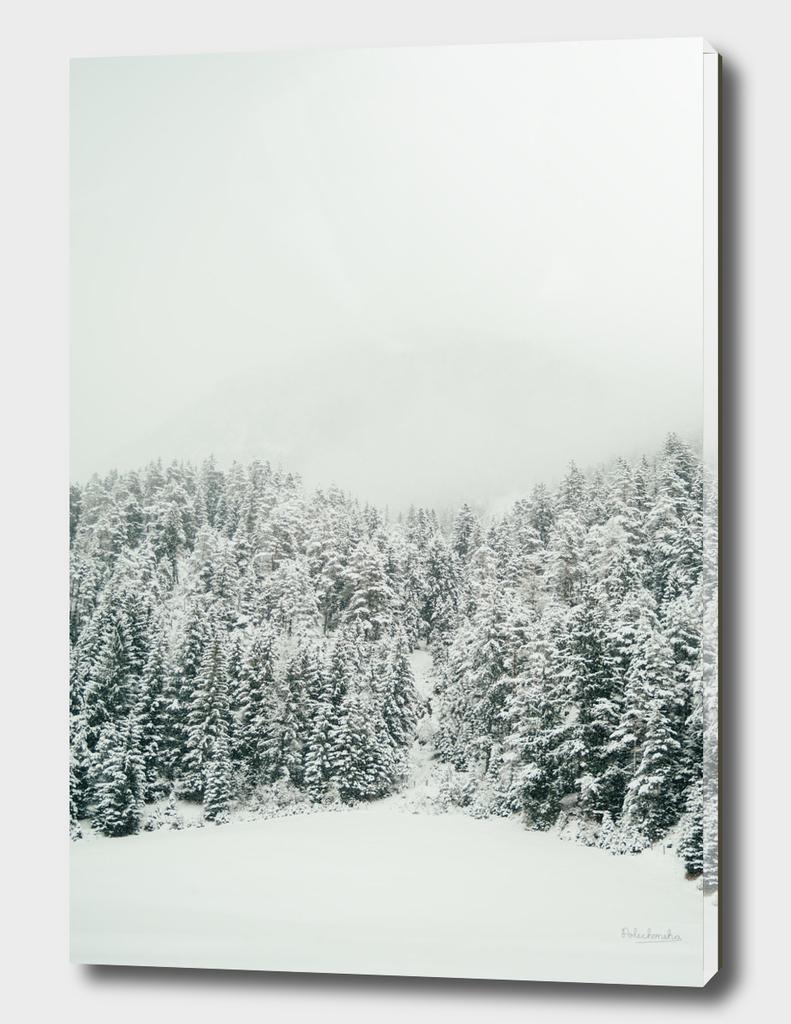 Snowy Weather