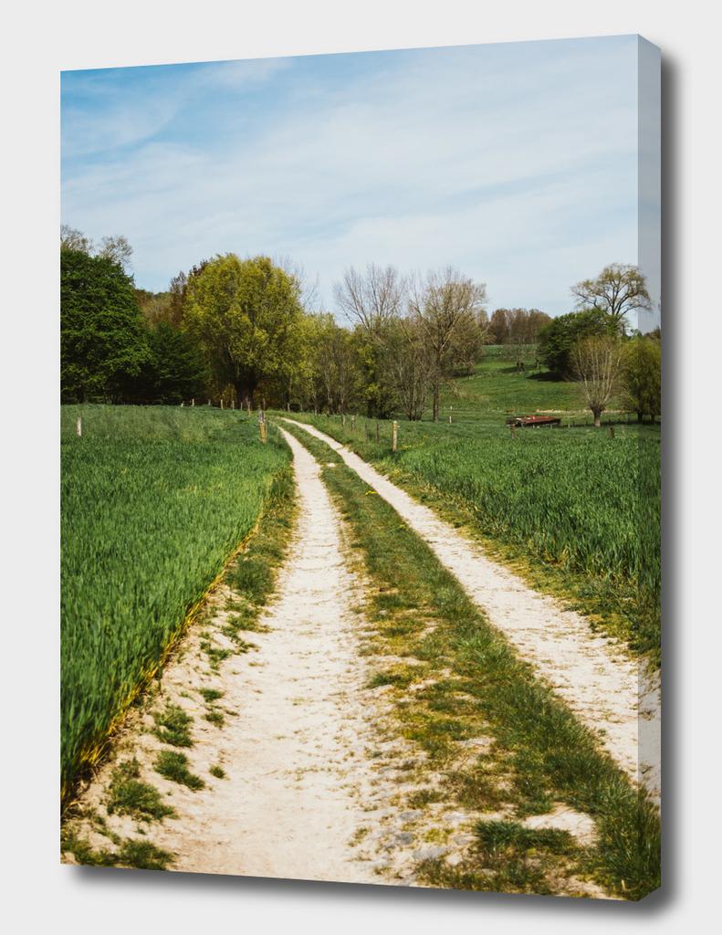 Tractor Tracks