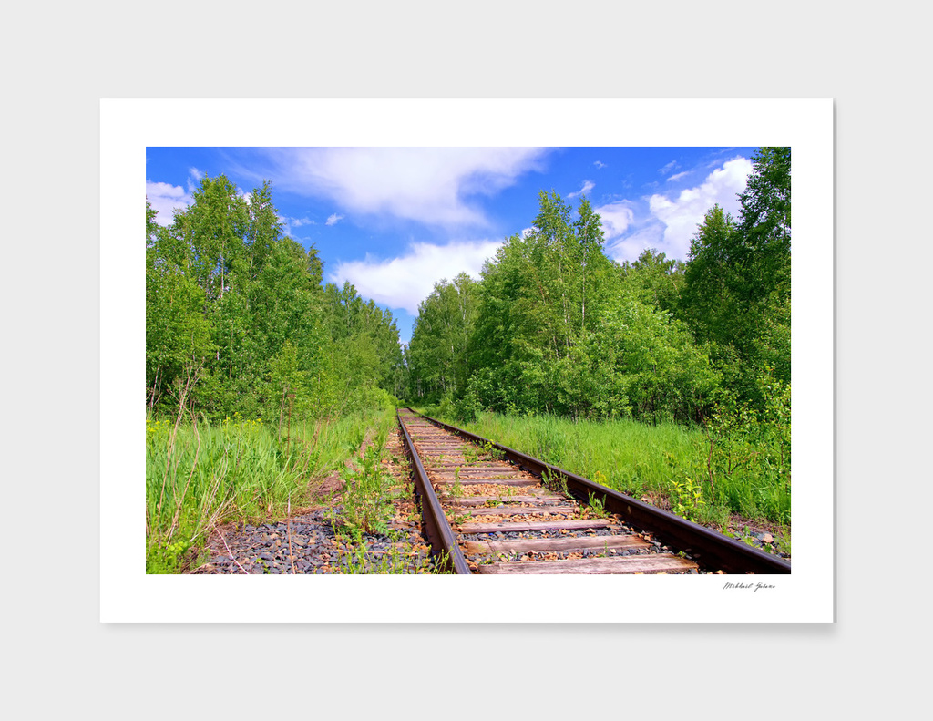 Summer. Forest. Railway