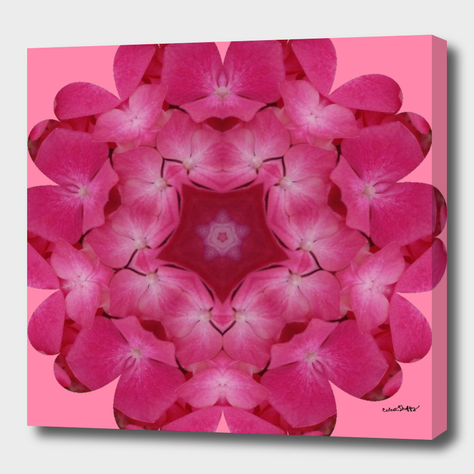 Pink Floral Mandala 0409 on pink background