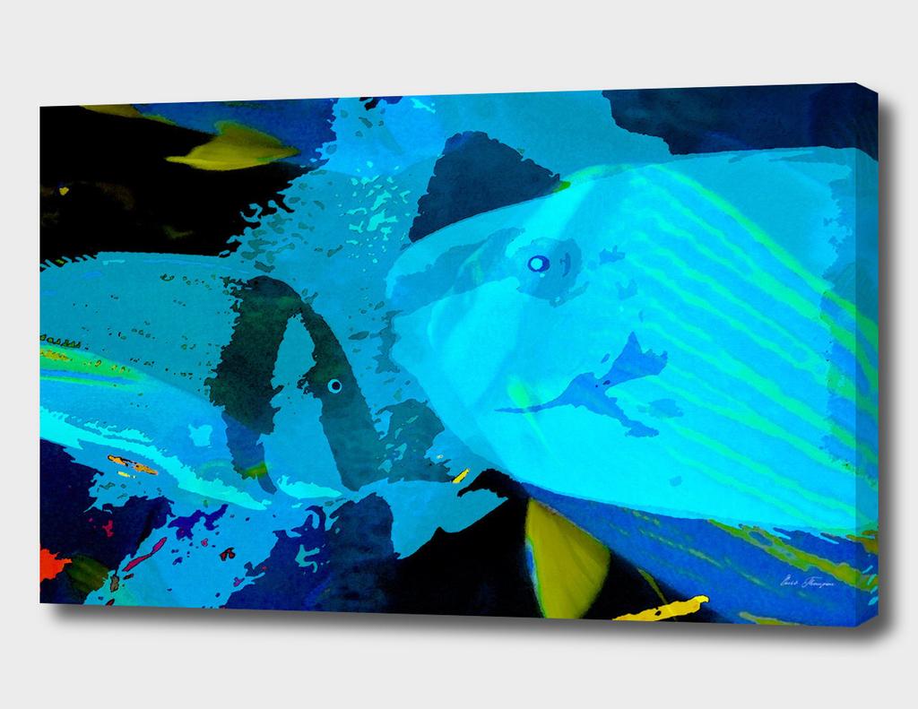 Blue Waters panoramic
