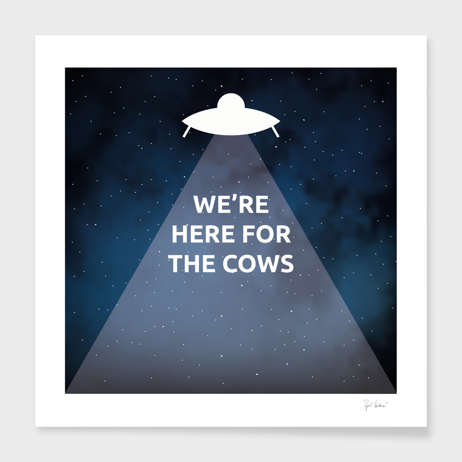 We're Here for the Cows