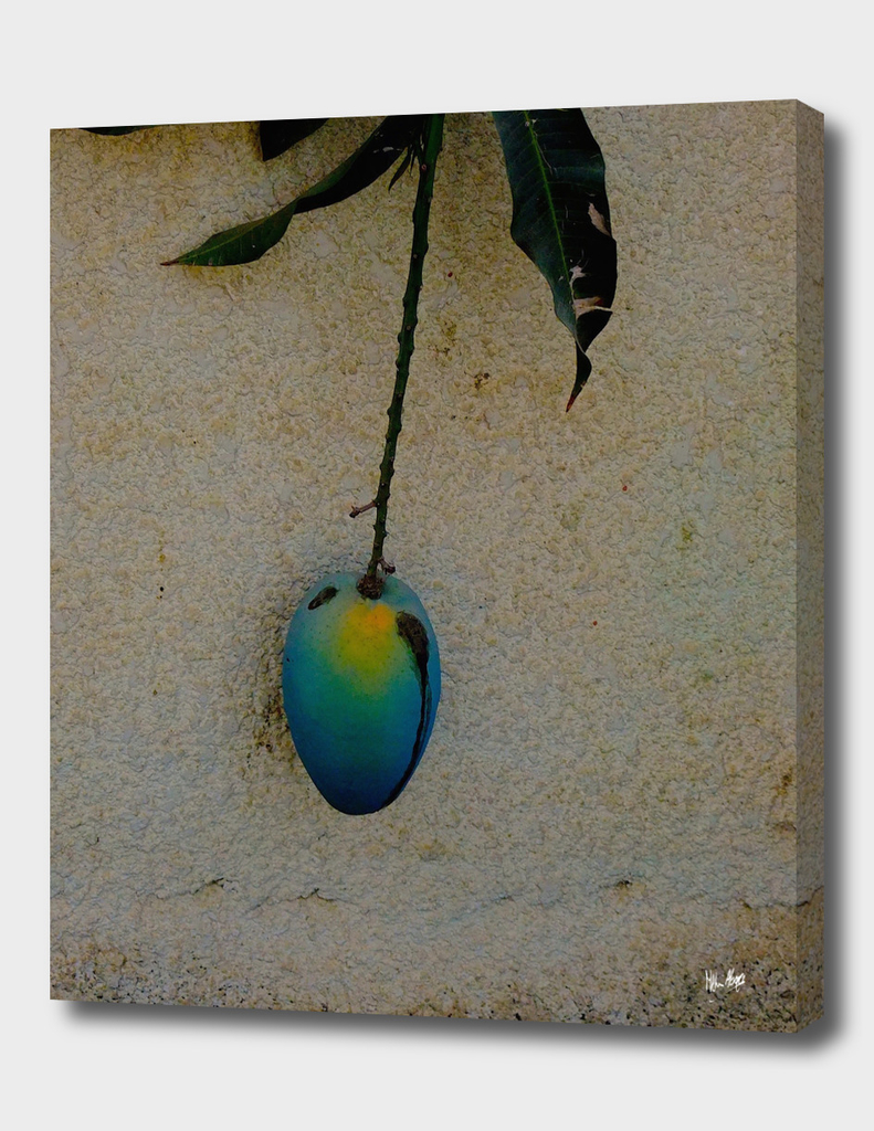 Mystical Mango
