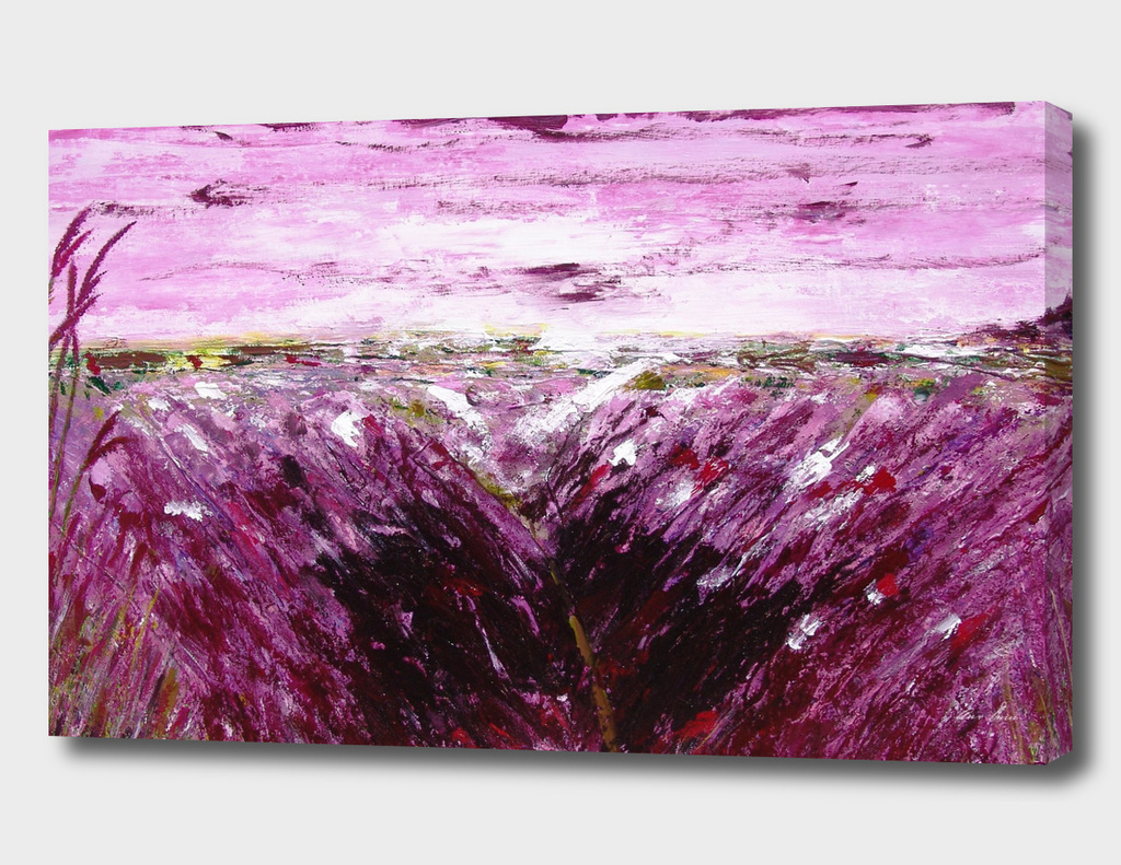 Lavender fiels