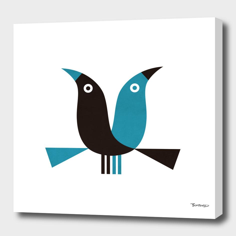 blue crows