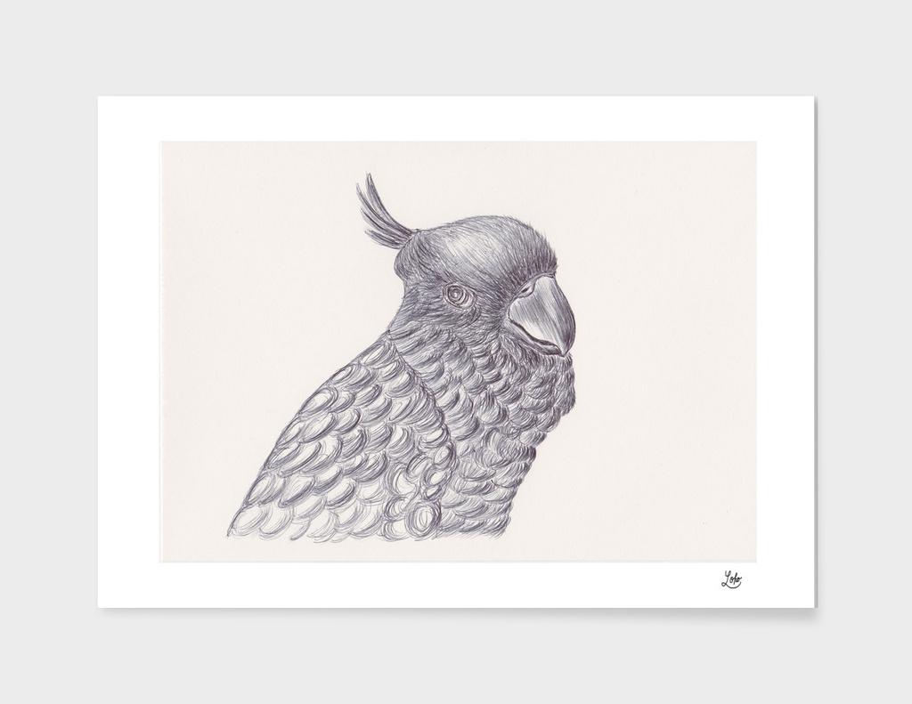 Ballpen Bird 6