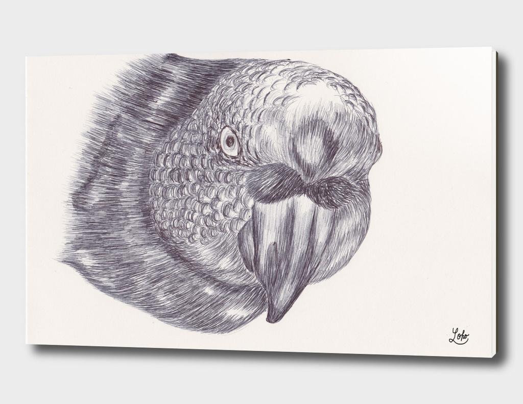 Ballpen Bird 7