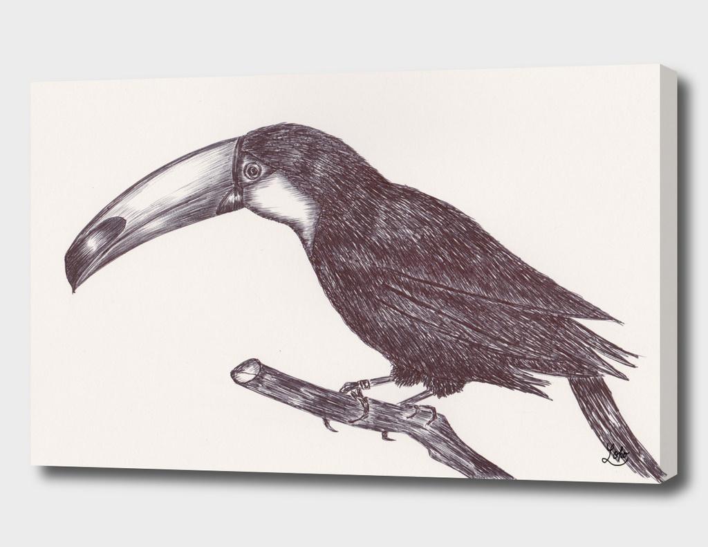 Ballpen Bird