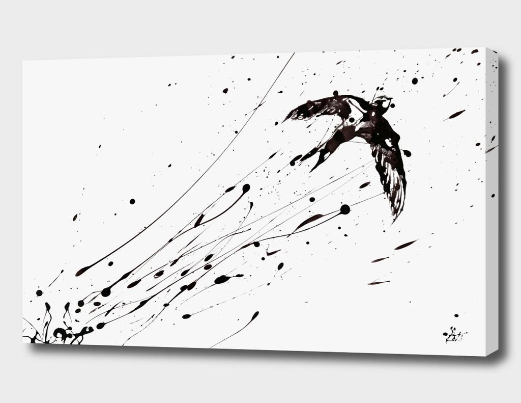 L'oiseau inconnu (II)