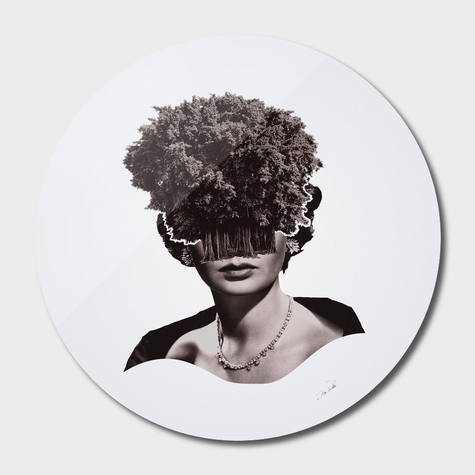 Tree People- Jean