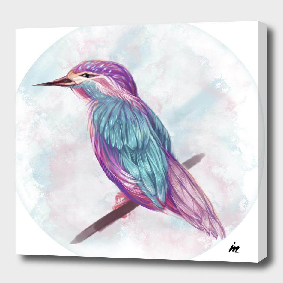 Magical Bird