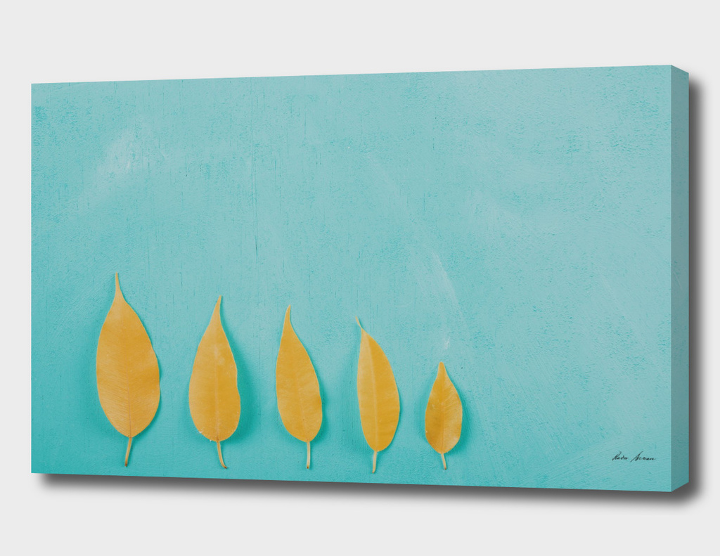 Yellow Autumn Leaves On Turquoise Wood Table