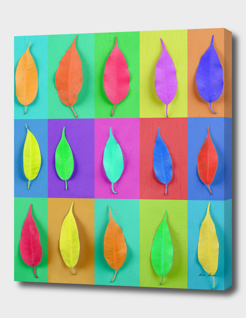 Colorful Leaves On Wood Table