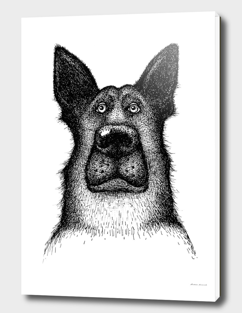 Hands drawing a portrait of a dog - Sheepdog