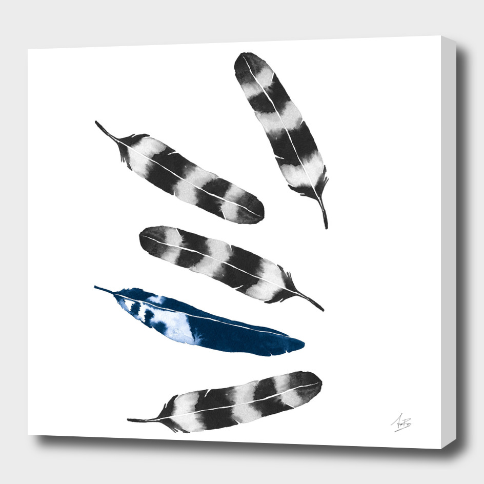 Feather Drift
