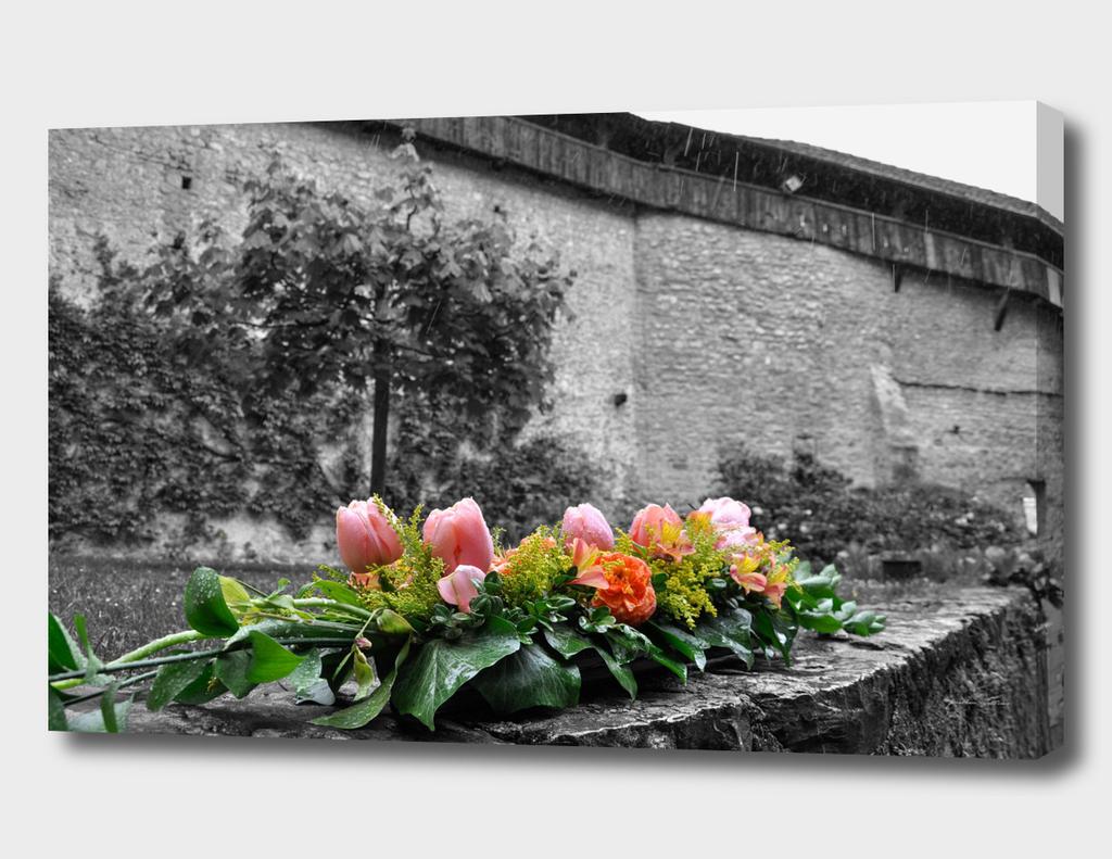 flowers at chateau de chillon