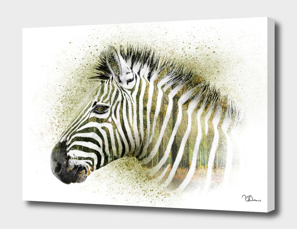 Zebra double exposure