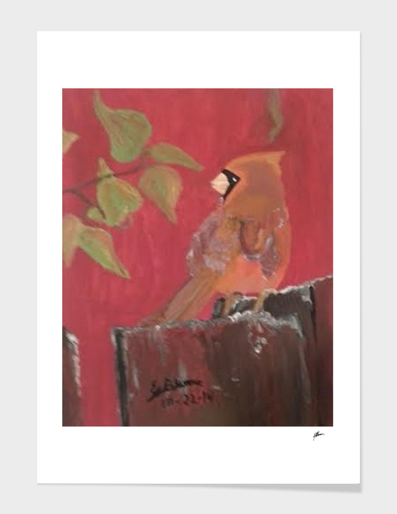 Red Cardinal on a Fence Acrylic Painting