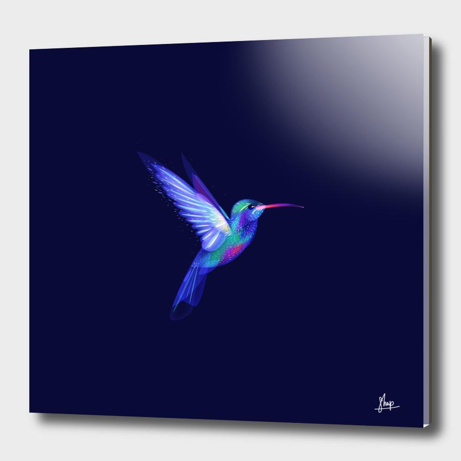 Colibri's dream 2