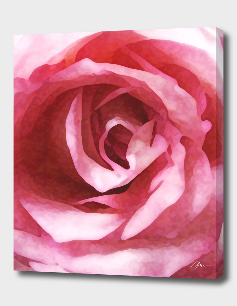 neovibe.us Pink Rose - Lmt Ed