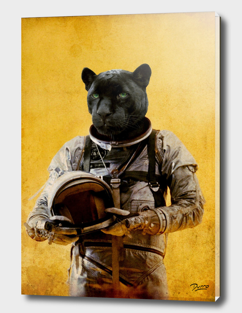 Space Jag