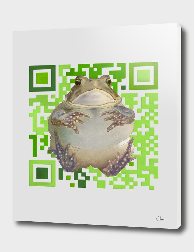 EcoQR Flying Toad