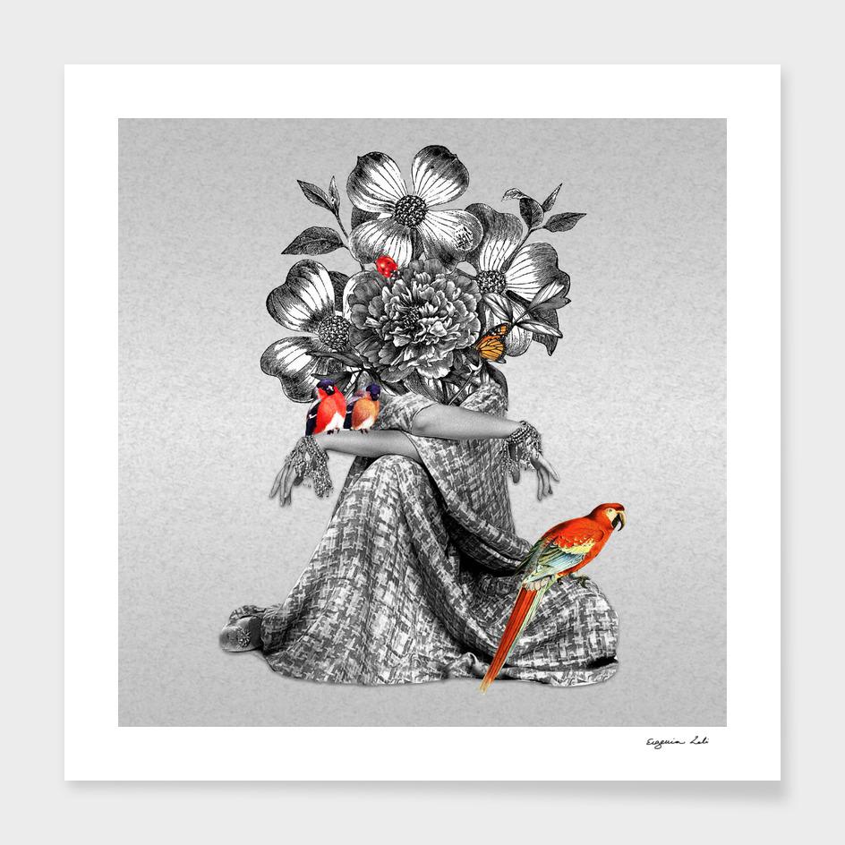 Lady Birds