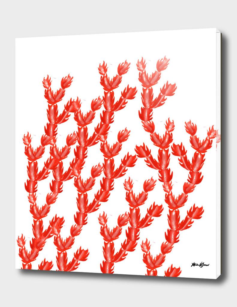 Pink Succulent Pattern