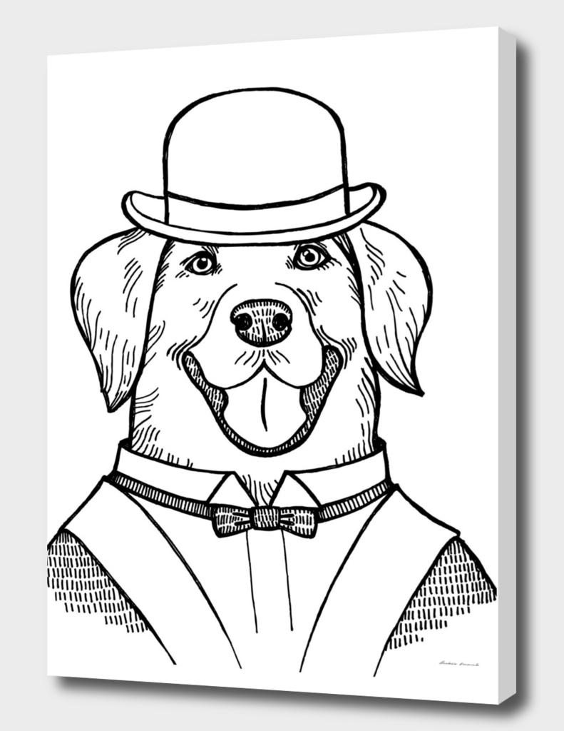Portrait of a Labrador retriever with a bowler hat