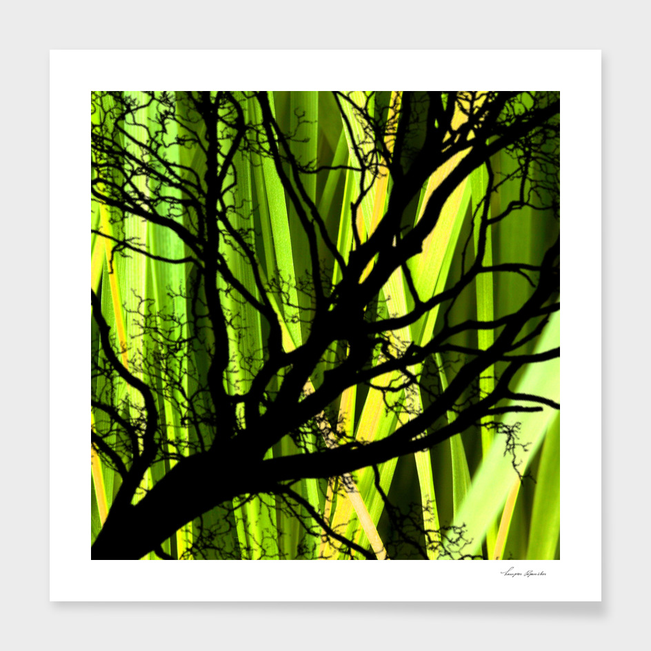 TREE  OF LIFE VIII