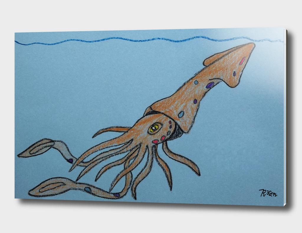 Jeweled Squid