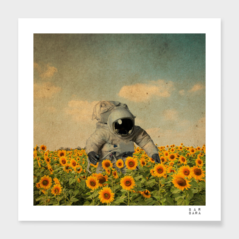 Astronaut in the field of Sunflowers
