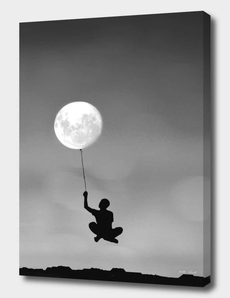 Fly by the Moon