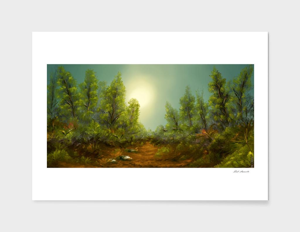 PHC Landscape