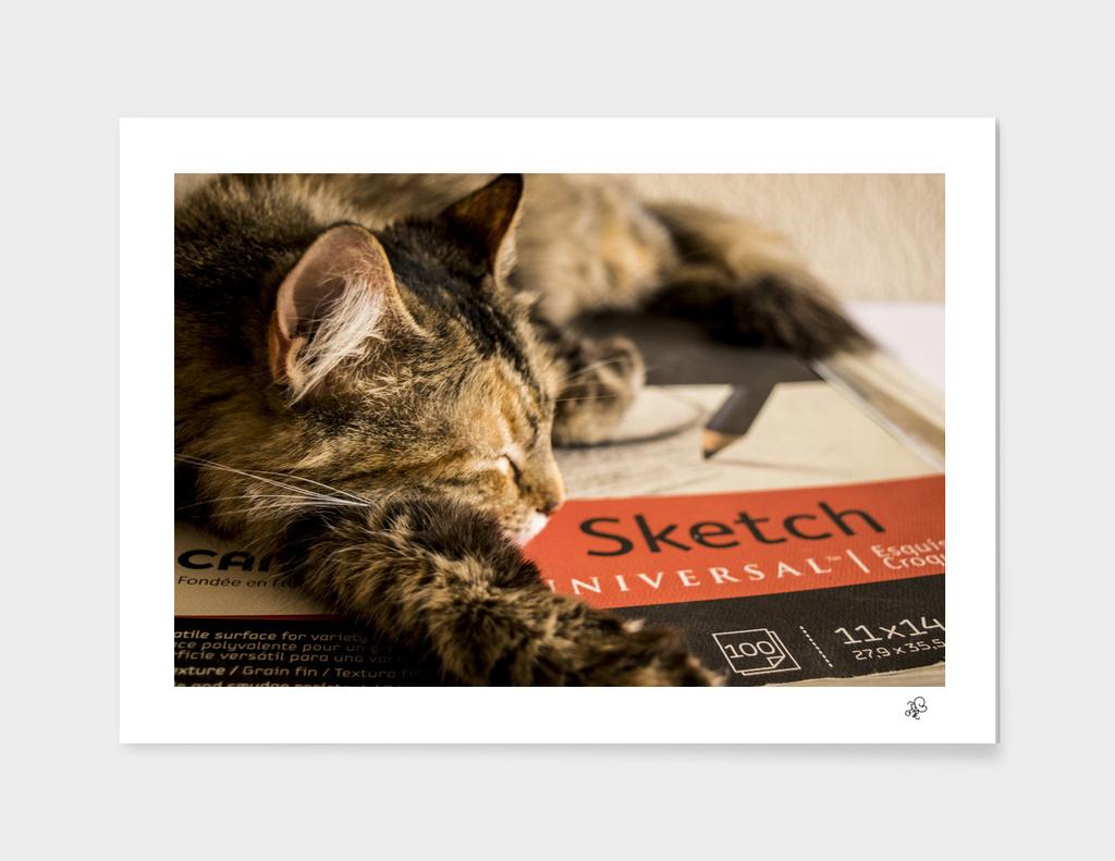 Pixel sobre Sketchbook