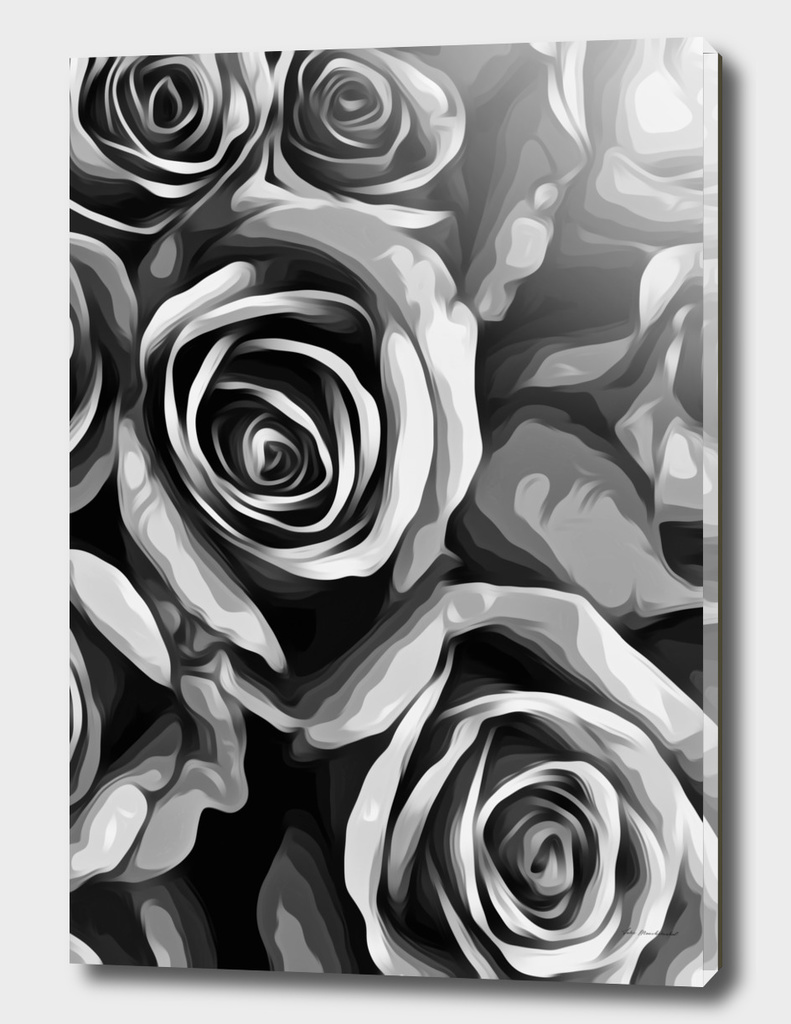 closeup rose in black and white