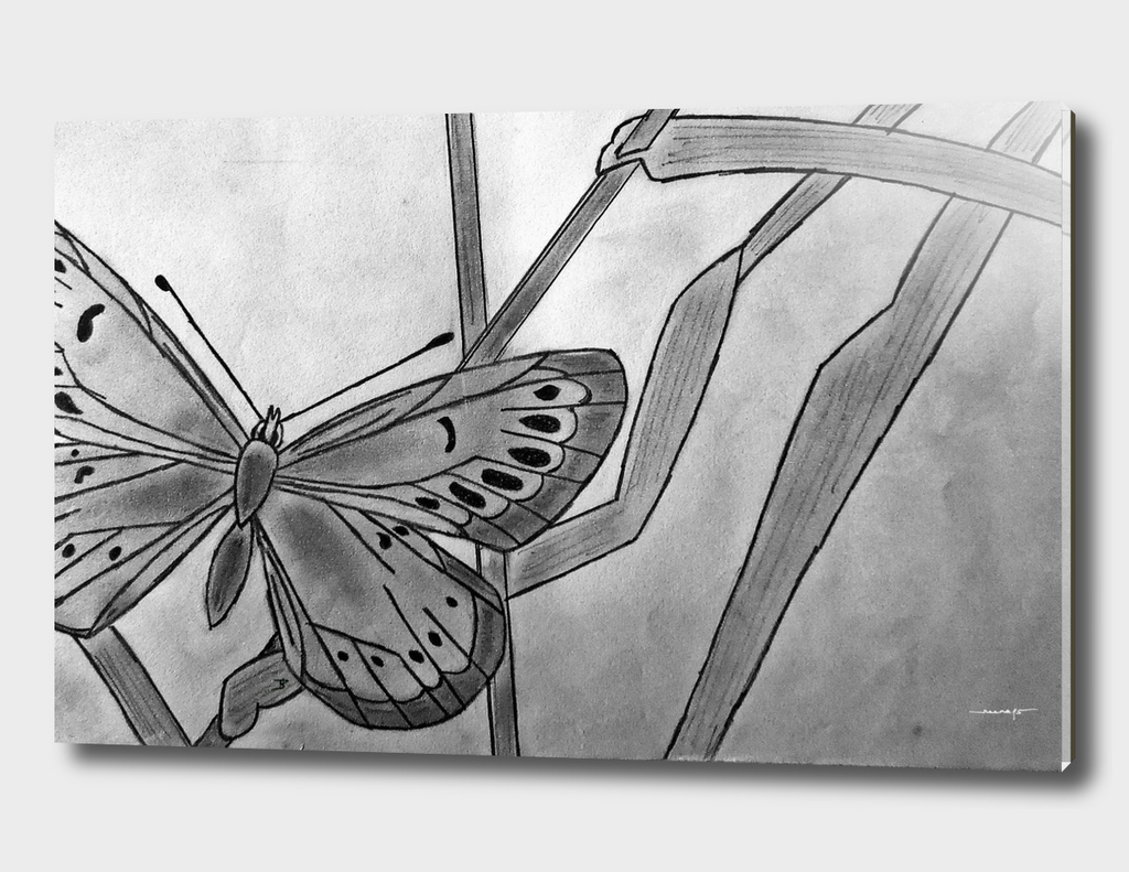 Butterfly in Bamboo